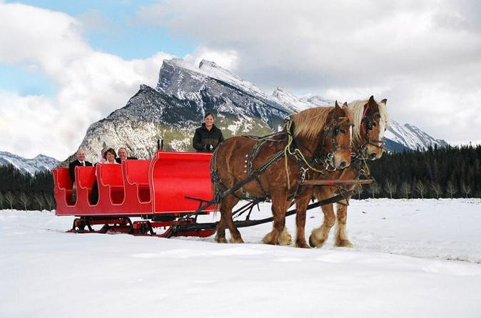 Horse-Drawn Sleigh Ride in Banff