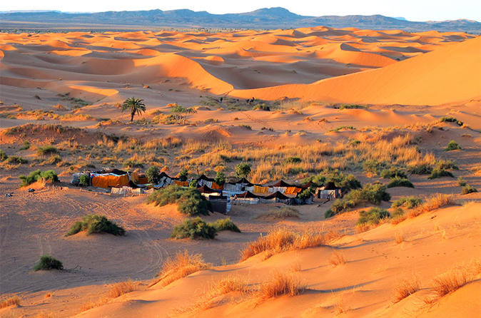 Overnight Tour to Zagora from Marrakech with Camel Trek and Berber Camp