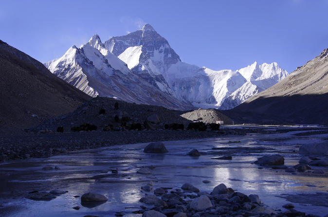 Private 8 day best of tibet all inclusive tour with everest base camp in lhasa 214642