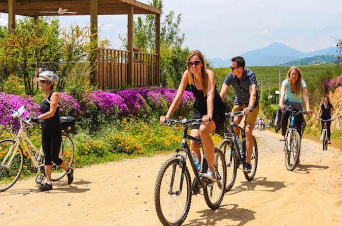 Passeio de bicicleta e excursão vinícola pelo Vale do Vinho de Casablanca