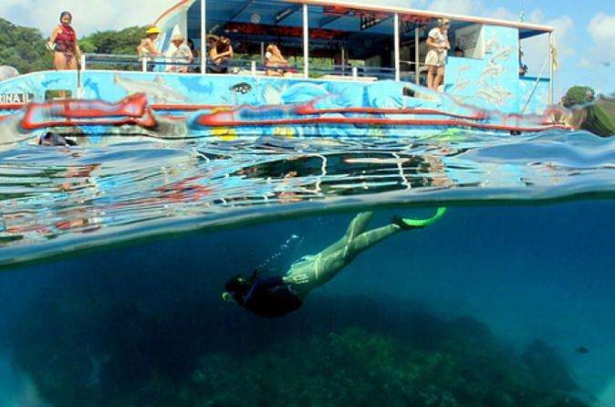 Excursão de catamarã de meio dia no arquipélago de Fernando de Noronha