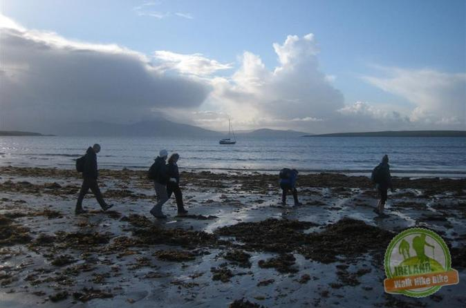 8 day dingle peninsula guided walk in tralee 211850