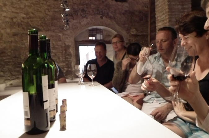 Private wine and oil tour in the priorat wine region in falset 203400