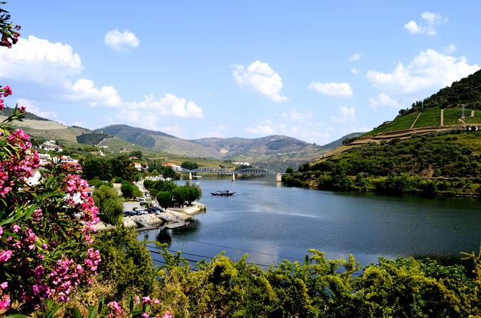 Excursão ao Vale do Rio Douro para grupo pequeno com degustação de vinhos, almoço português e Cruzeiro opcional pelo Rio