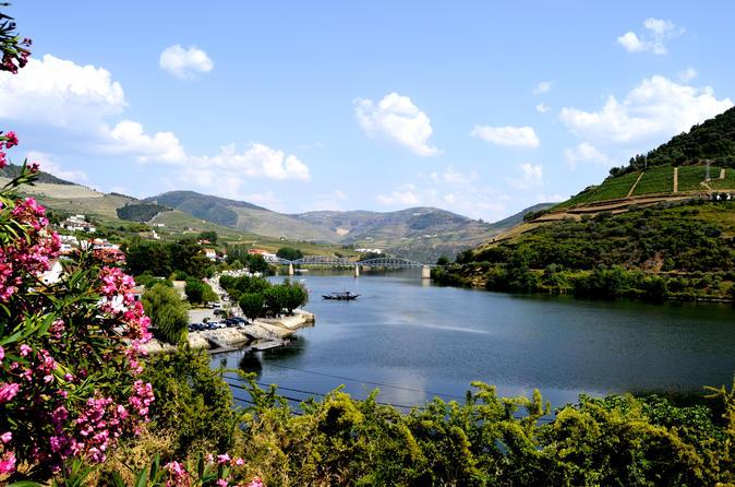 Tour per piccoli gruppi nella valle del Douro con degustazione di vino, pranzo portoghese e crociera sul fiume facoltativa