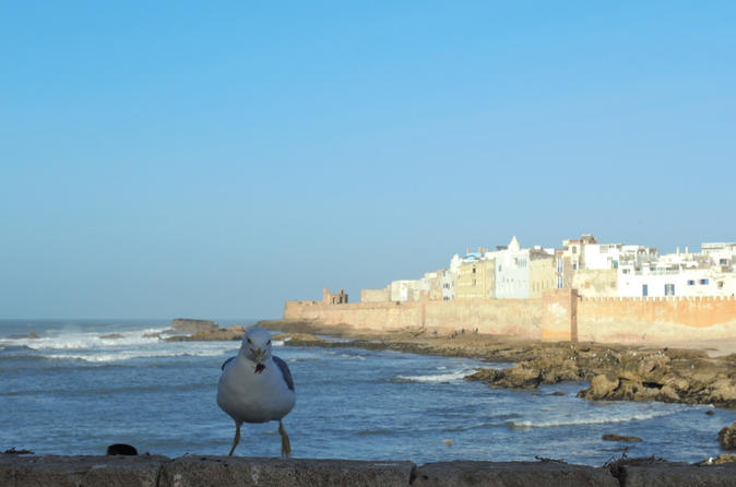 Small-Group Day Trip to Essaouira from Marrakech
