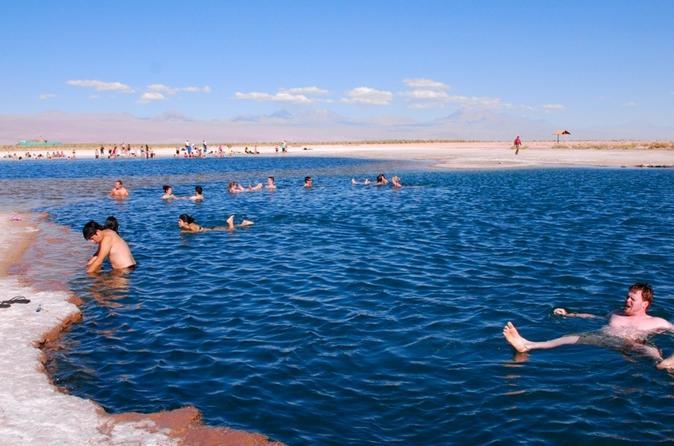 Cejar Lagoon Half-Day Tour from San Pedro de Atacama