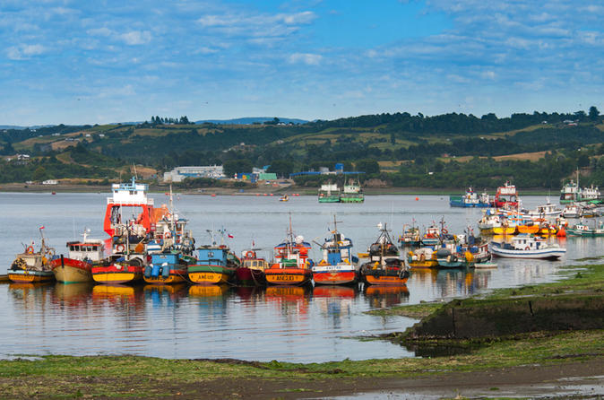Excursão de Dia Inteiro: Chiloe Istand incluindo Ancud, Castro e Dalcahue saindo de Puerto Varas