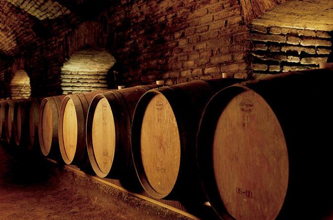 Excursão de meio dia à vinícola Concha y Toro