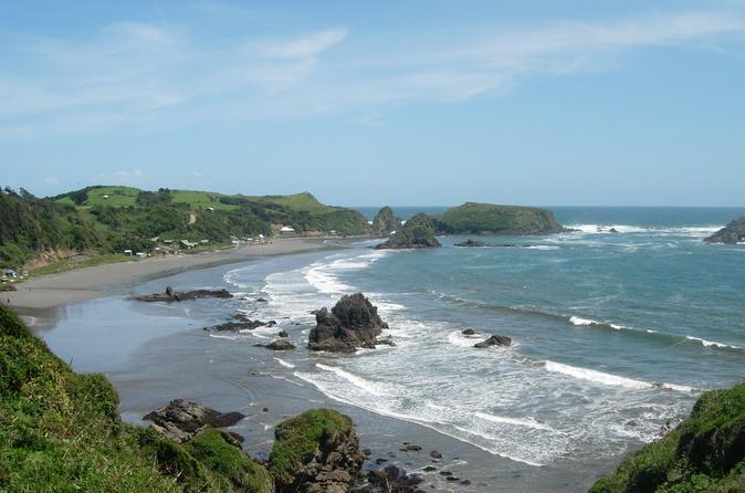 Ilha de Chiloe e os pinguins de Puñihuil de Puerto Varas