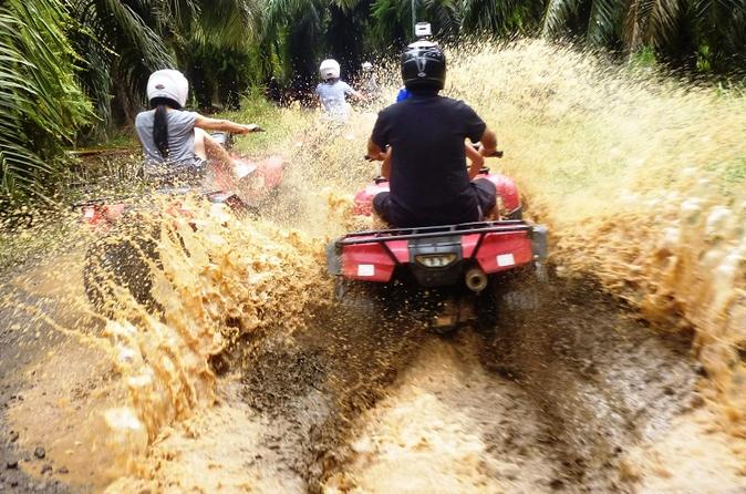 Atv and canopy tour from flamingo beach in playa flamingo 254121