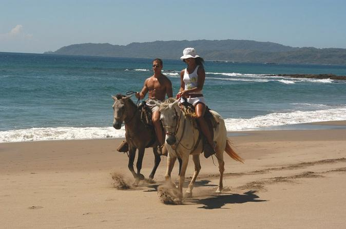 Horseback riding jungle and beach in playa flamingo in playa flamingo 264864