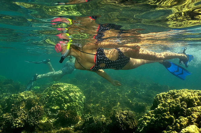 Kayak and snorkel tour from flamingo beach in playa flamingo 240801