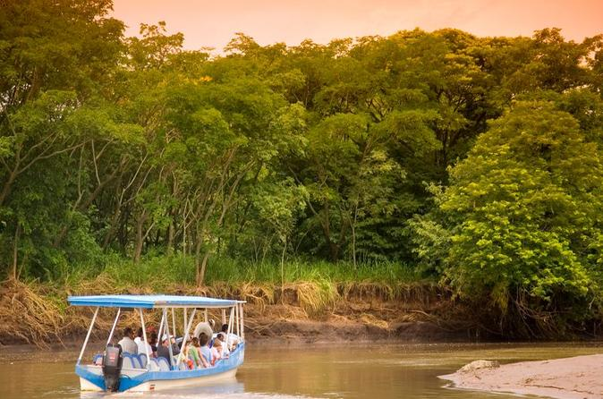 Palo verde wildlife tour from tamarindo flamingo beach in tamarindo 213708