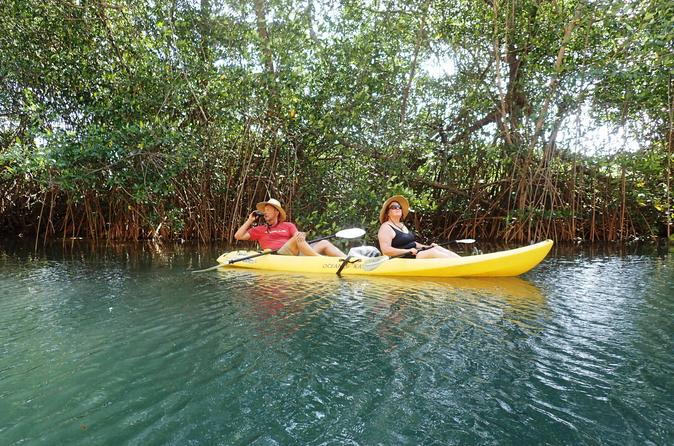 Samara Beach Wildlife and Mangrove Kayaking Tour