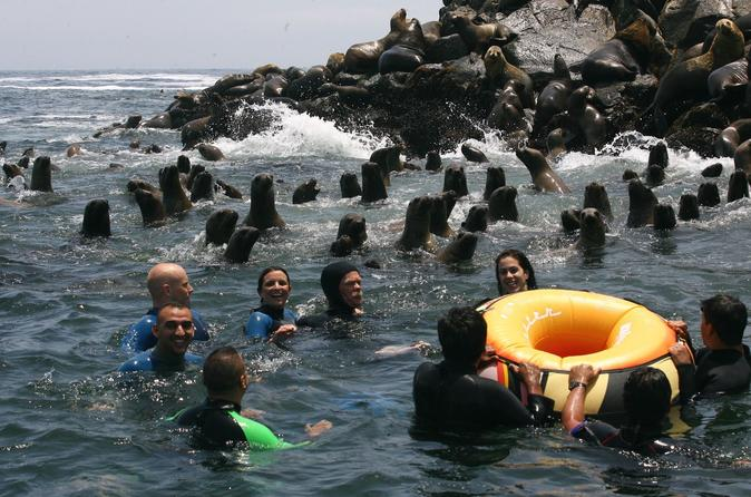 Palomino Islands Cruise & Swimming with Sea Lions in Lima