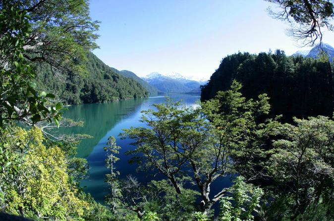 Bosque de Alerces Milenarios - Parque Nacional Los Alerces