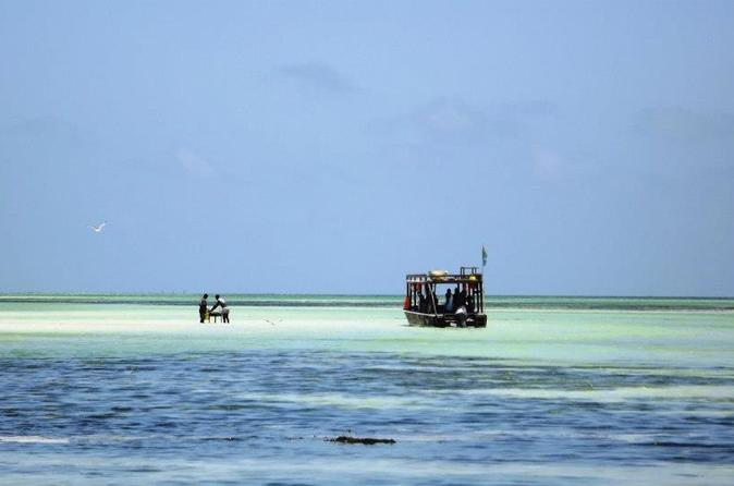 Sea safari to watamu marine park beach in watamu 227420