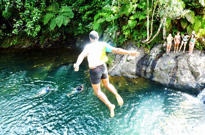 Suva Shore Excursion: Waiyanitu Waterfall Trek and Fijian Village Tour with Buffet Lunch