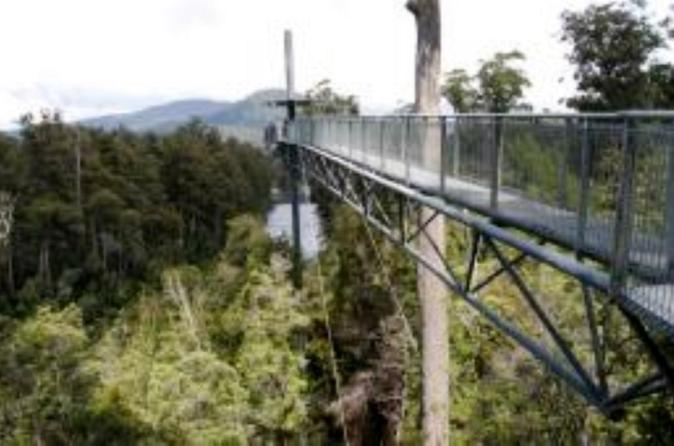 Small-Group Tour from Hobart to Mt Wellington and Tahune AirWalk with Optional Bonorong Wildlife Sanctuary or Zoodoo Wildlife Park