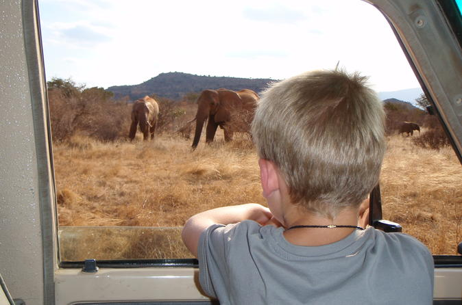 Private small group full day safari tsavo east national park from in mombasa 269201