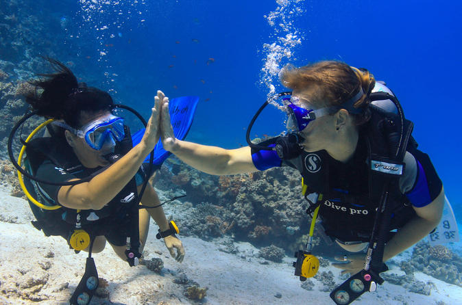 2 dives from a comfy boat for certified divers in hurghada 326083