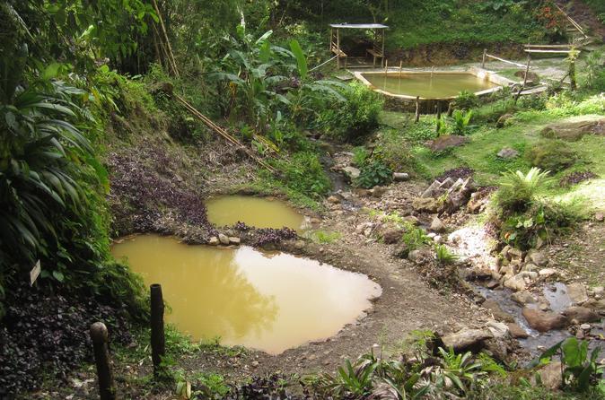 Dominica Half-Day Tour: Mero Beach, Salton Waterfalls, Wotten Waven and Ti Kwen Glo Cho