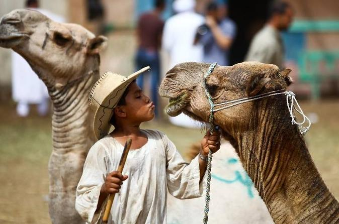 Private Guided Day Trip to Giza Pyramids and Saqqara including 1-Hour Sunrise Camel or Horse Ride and Egyptian Breakfast