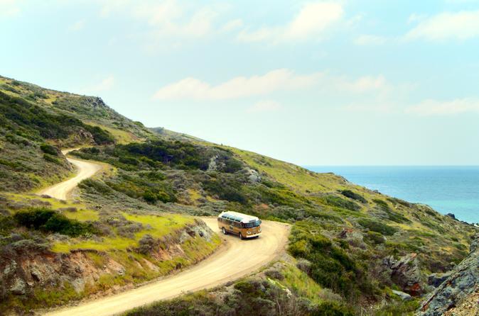 Catalina island skyline drive in avalon 298477