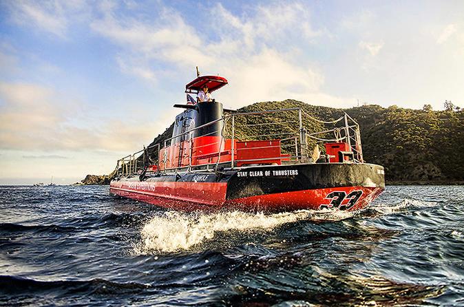 Catalina island undersea expedition in avalon 267920