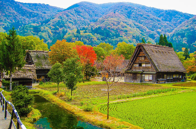 Private custom full day tour of shirakawa go from takayama in takayama 267946