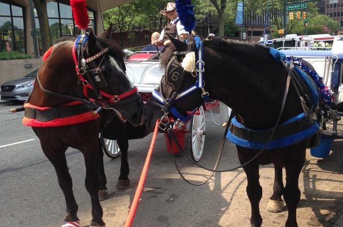 Philadelphia horse drawn carriage tour in philadelphia 228753