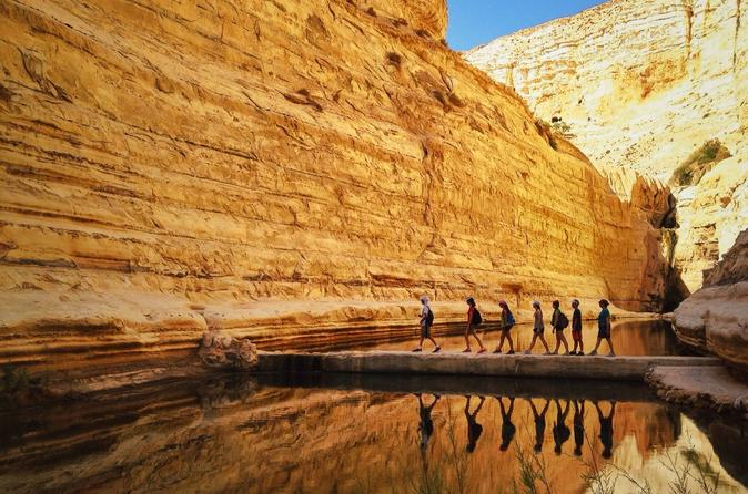 Private tour highlights of the negev from jerusalem in jerusalem 204190