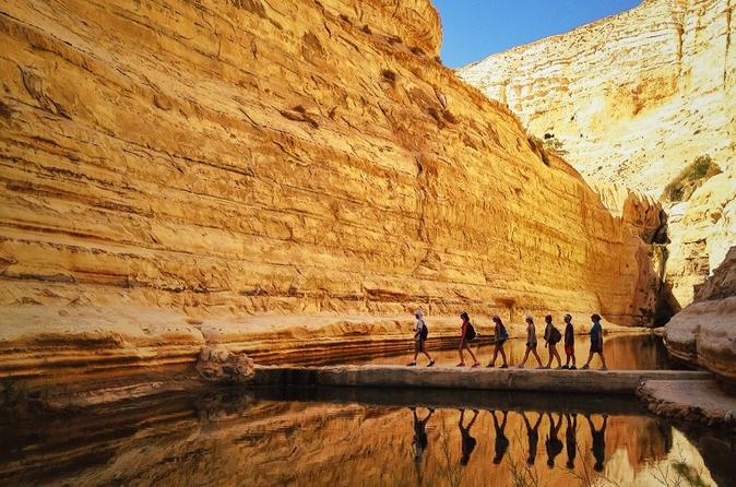 Private tour highlights of the negev from tel aviv in tel aviv yafo 211067