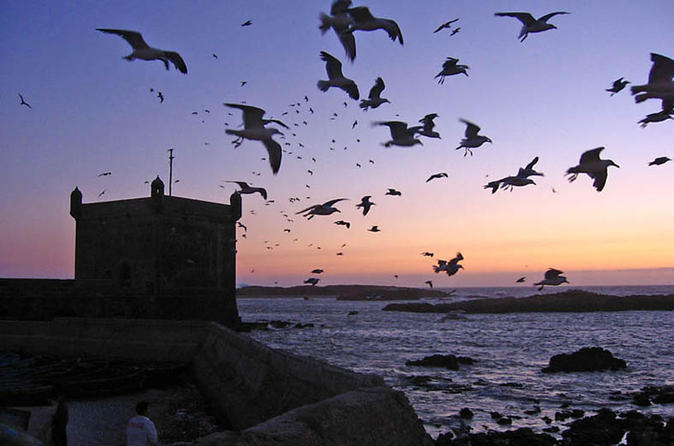 4 day essaouira guided tour including astapor in essaouira 217455