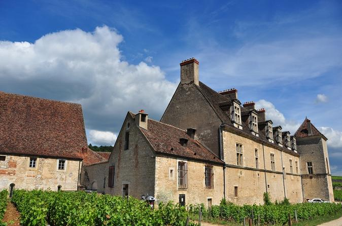 Afternoon tour discovery in the c te de nuits vineyards in dijon 227341