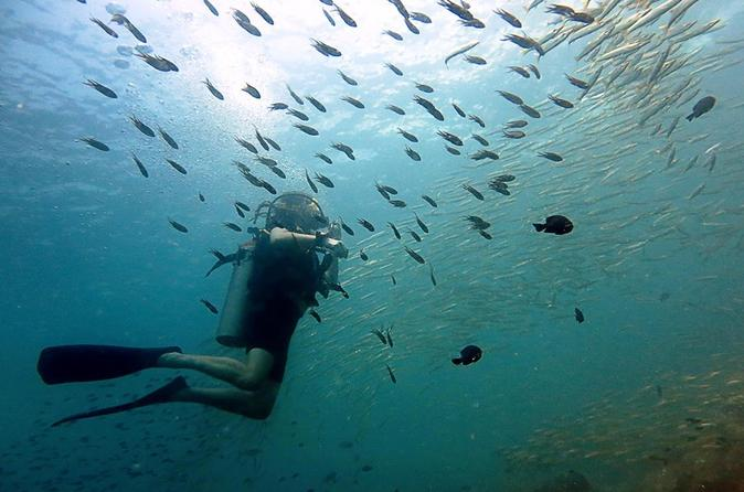 Koh chang dive trip including 2 dives in ko chang 211183