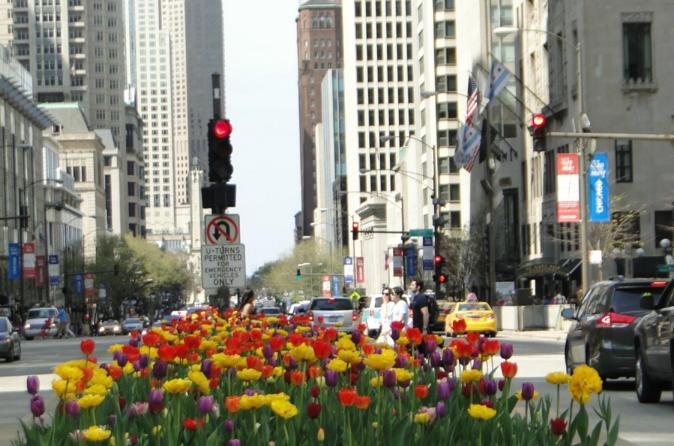 Mag Mile Walking Tour Of Chicago