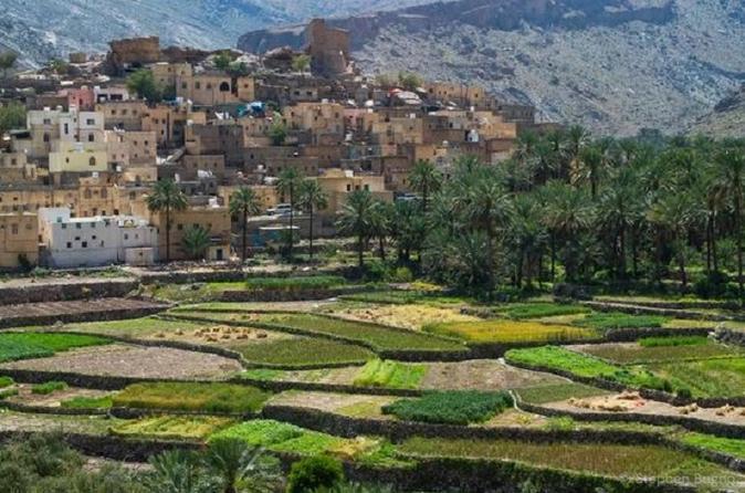Billad Sayt (Day trip) 4WD :Muscat Tours