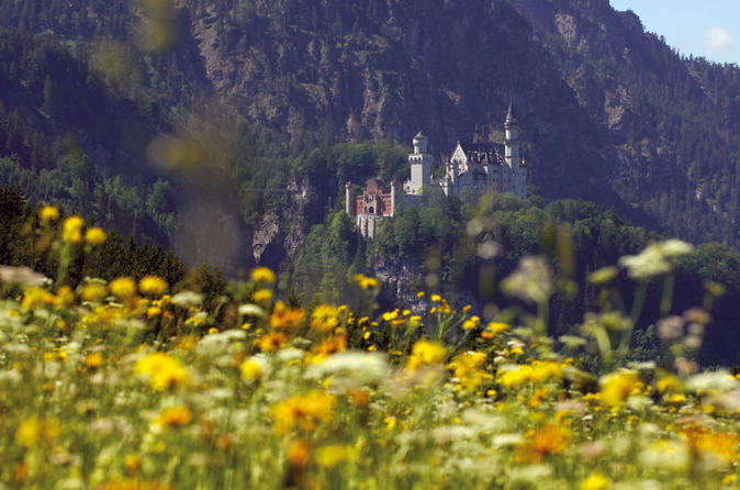 Private day tour from fussen neuschwanstein castle oberammergau and in f ssen 458460