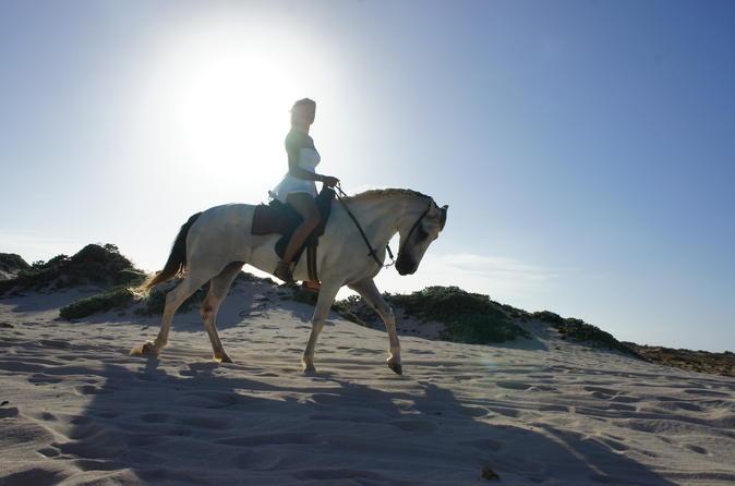 Aruba Horseback Riding Tour For Advanced Riders