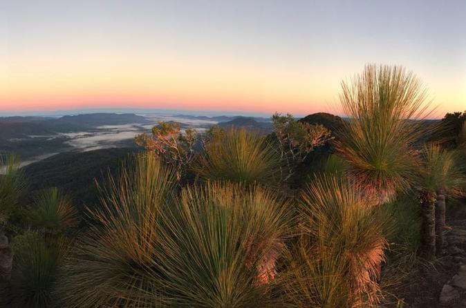 4-Day South East Queensland Scenic Rim and Spicers Peak Lodge Walking Trip from Clumber