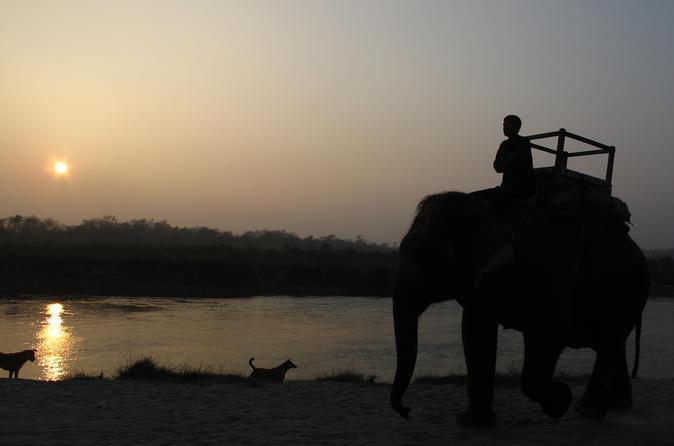 3 Day Chitwan Jungle Safari Wildlife Adventure Tour