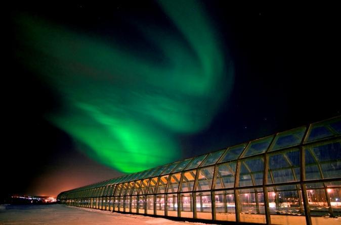 Arktikum museum guided tour in rovaniemi in rovaniemi 224556