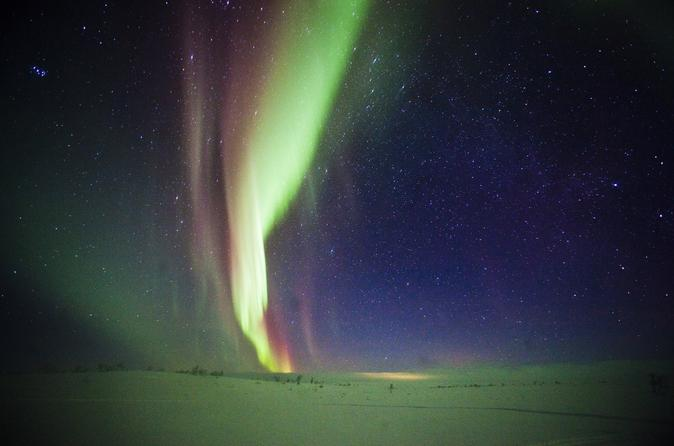 Northern Lights Snowmobile Safari from Rovaniemi including Picnic on Campfire