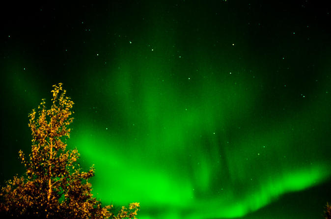 The northern lights hunting tour incl snacks on campfire from in rovaniemi 280794