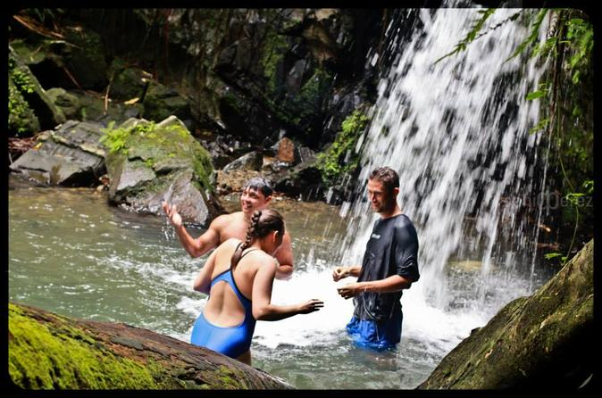 El Yunque Rainforest Adventure - FULL DAY - From San Juan