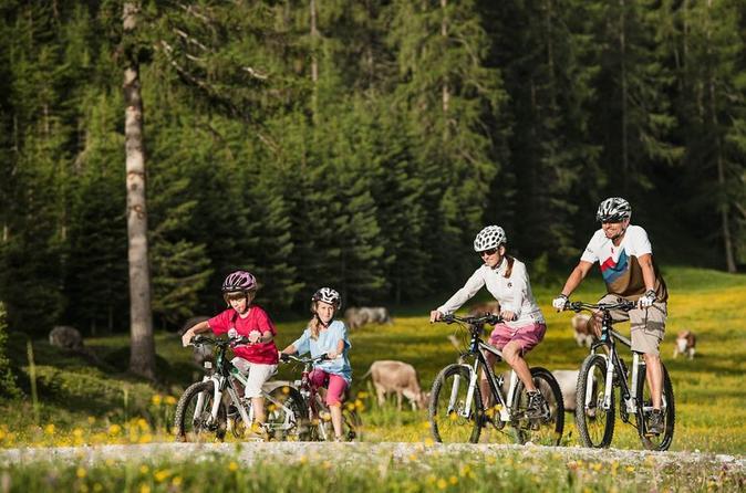 Guided Bike Tour to Mount Postavaru from Brasov