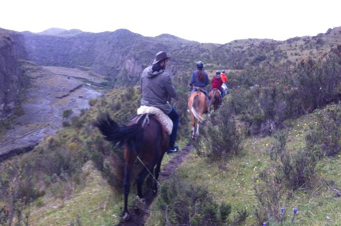 4-Day Horse Trek Through Andes or Cloud Forest