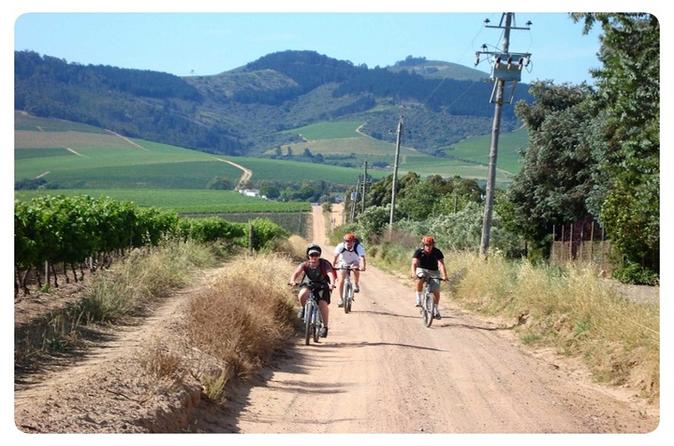 Cape winelands cycle tour and wine tasting from stellenbosch in stellenbosch 229194